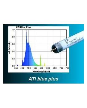 T5 ATI 24w Blue Plus