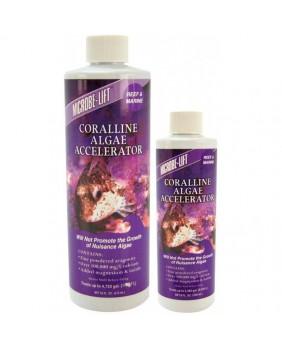 Coralline Algae Accelerator