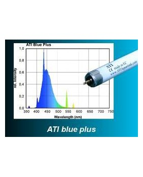 T5 ATI 24w Blue Plus