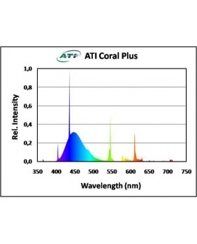 T5 ATI Coral Plus