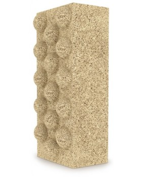Xport BIO Brick