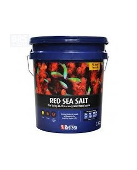 Red Sea Salt 22 Kg cubo