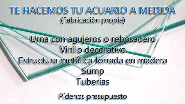 Aquanovel tienda de acuariofilia aquanovel for Acuarios a medida
